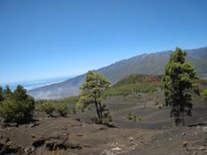 La Palma-El Pillar-Vulkanische vlakten onderweg omhoog