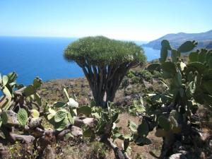 La Palma-El Tablado-Aan het einde van de wereld